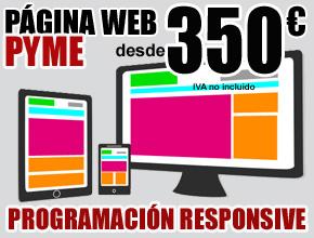PAGINA WEB PYME
